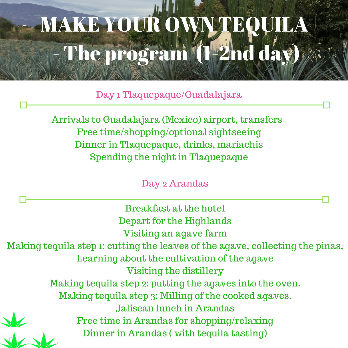 Makeyourowntequila program tequila academy for Build your own house price